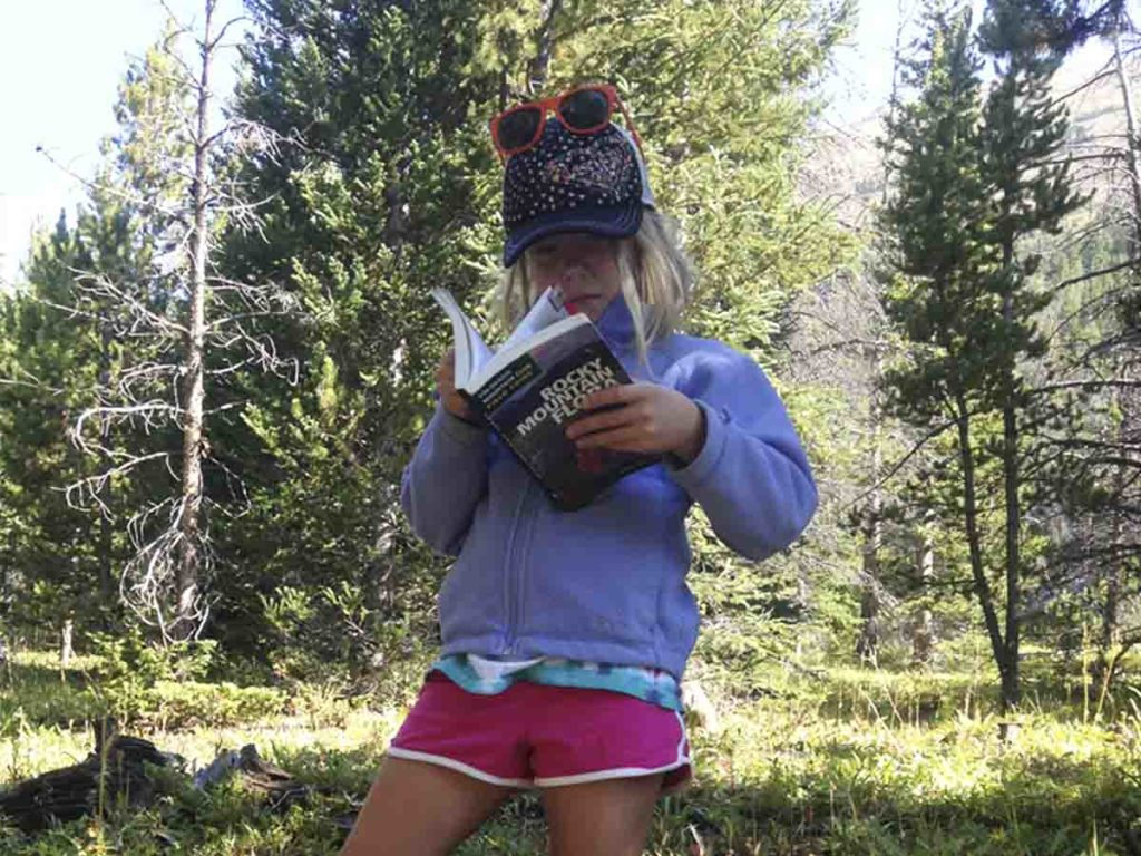 Hunting for huckleberries is a great kid activity