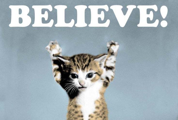 Believe Cat Poster